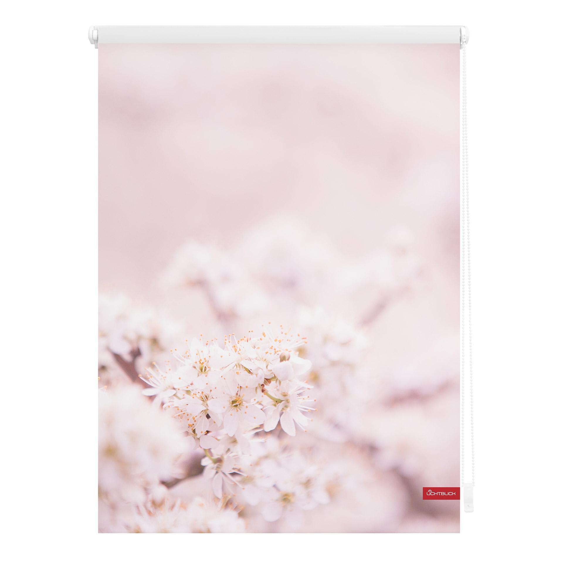Klemmfix Rollo Kirschblüten (45x150, rosa-weiß)