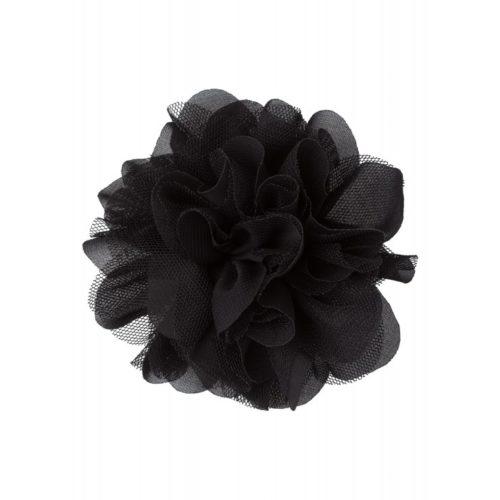 Ansteckblüte, schwarz